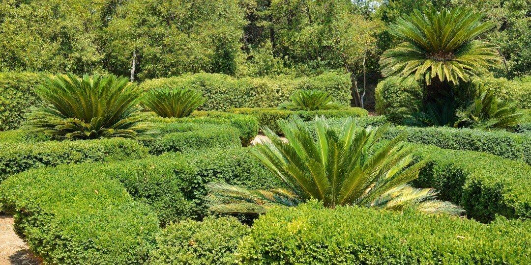 Game of Thrones Tour Croatia - Lokrum botanical garden